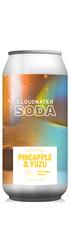 Pineapple & Yuzu Soda