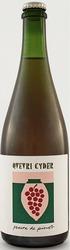 Qvevri Cyder - Peaux De Pinot