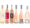 Southern French Summer Rose Selection