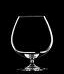 Vinum Cognac glass (pack of 2)
