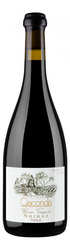 Warner Vineyard Shiraz