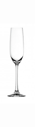 Salute Champagne Glass - Pack of 4