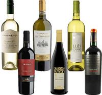Winter Selection - 12 bottles