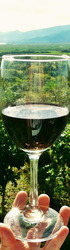 Tour of Rioja Wine Tasting, Hurstpierpoint (Friday 18th October)
