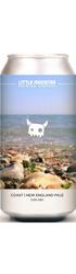 Coast New England Pale Image