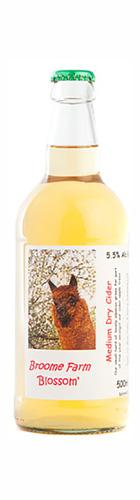 Blossom Medium Dry Still Cider