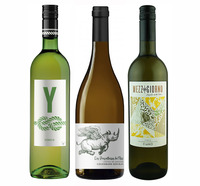 Everyday Drinking Whites - mixed 6 pack